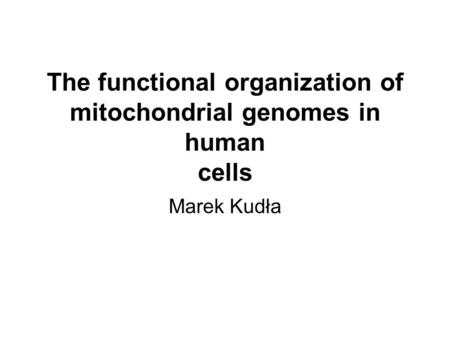 The functional organization of mitochondrial genomes in human cells Marek Kudła.