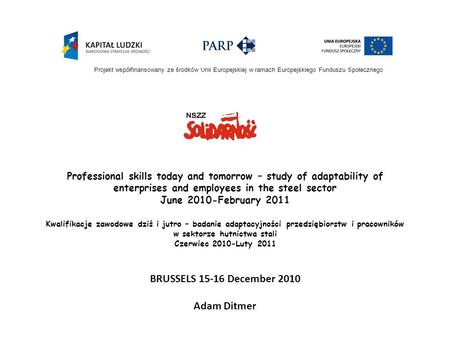 Professional skills today and tomorrow – study of adaptability of enterprises and employees in the steel sector June 2010-February 2011 Kwalifikacje zawodowe.