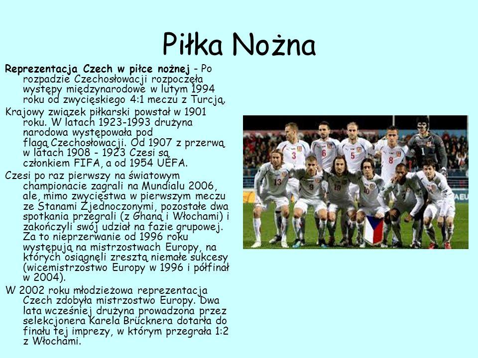 Piłka Ręczna Reprezentacja Czech w piłce ręcznej mężczyzn – narodowy zespół piłkarzy ręcznych Czech.