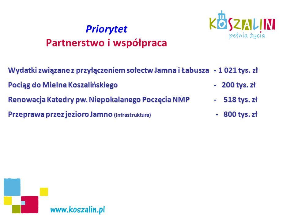 Szacunkowy Koszt realizacji projektu w 2009 roku – 173,2 tys.