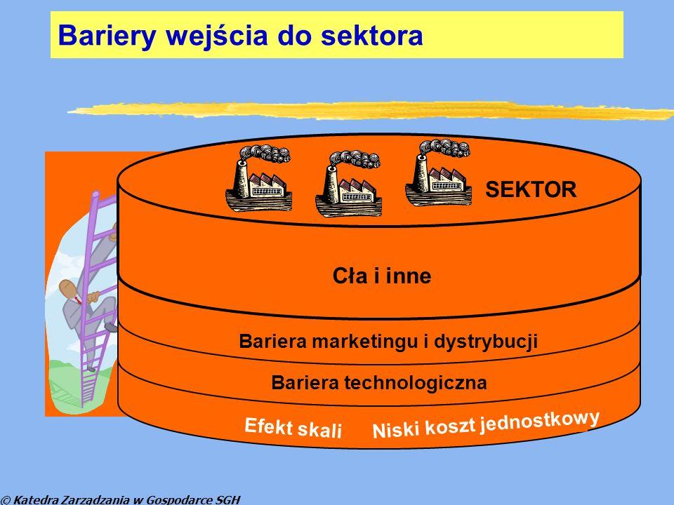 © Katedra Zarządzania w Gospodarce SGH Bariery wejścia do sektora Cła i inne Bariera marketingu i dystrybucji Bariera technologiczna Efekt skali Niski koszt jednostkowy SEKTOR