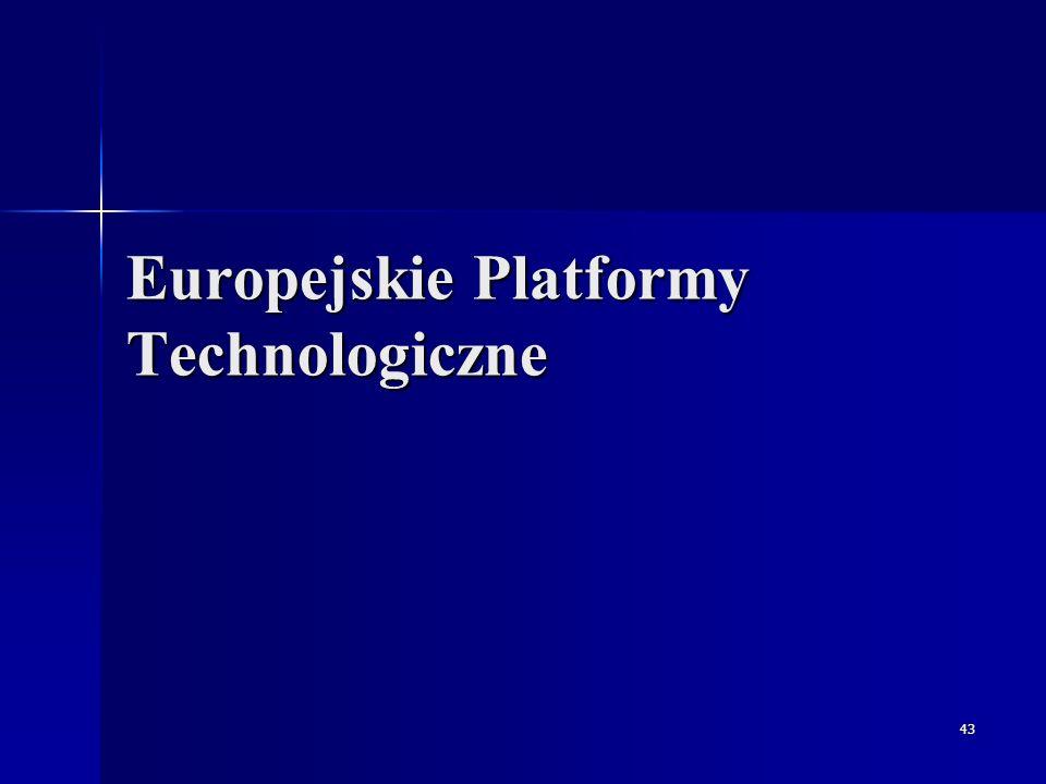 Europejskie Platformy Technologiczne Zadania Wypełnienie luki pomiędzy nauką i przemysłem - zwiększenie wsparcia finansowego nauki ze strony przemysłu Mobilizacja i skupienie najważniejszych instytucji badawczych, przemysłowych, grup decyzyjnych i grup użytkowników na poziomie narodowym i europejskim wokół kluczowych technologii Zainicjowanie i wdrożenie spójnej strategii (Strategic Research Agenda) rozwoju tych technologii w perspektywie średnio- i długofalowej, wypracowanie regulacji prawnych (ustanowienie efektywnego partnerstwa publiczno-prywatnego dla wdrożenia tego programu) i standardów technologicznych Pokonywanie barier technologicznych i poza technologicznych