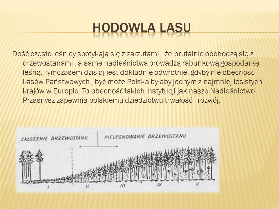  Skoro las jest naszym naturalnym dostarczycielem surowca, stanowi również środowisko pracy naszych leśników.