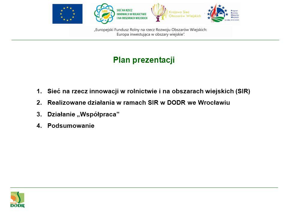 Cel główny i cele szczegółowe SIR Wspieranie innowacji w rolnictwie, produkcji żywności, leśnictwie i na obszarach wiejskich.