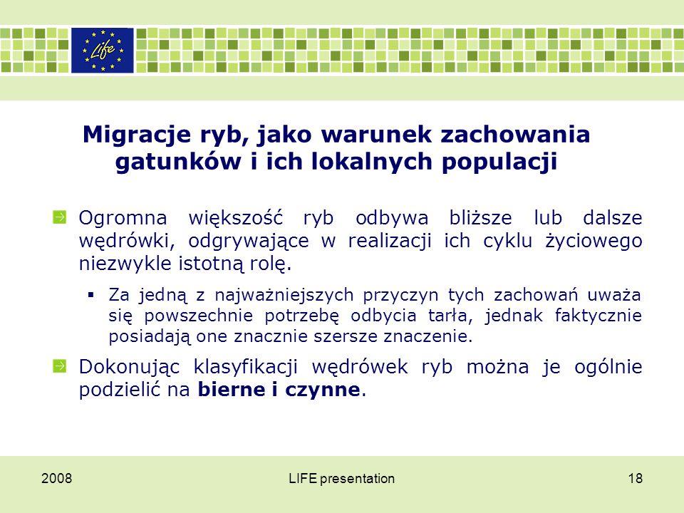 2008LIFE presentation19 Migracje ryb, jako warunek zachowania gatunków i ich lokalnych populacji W wędrówkach biernych do przemieszczania wykorzystywany jest prąd wody i dotyczą one głównie stadiów młodocianych takich jak np.
