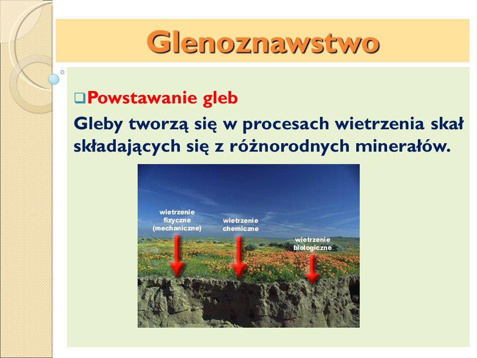 Czynniki glebotwórcze: Wietrzenie skał i minerałów Wietrzenie fizyczne skał jest efektem działania zmian dziennej i nocnej temperatury skał oraz zamarzającej w spękaniach skalnych wody, co powoduje rozpadanie się skał.