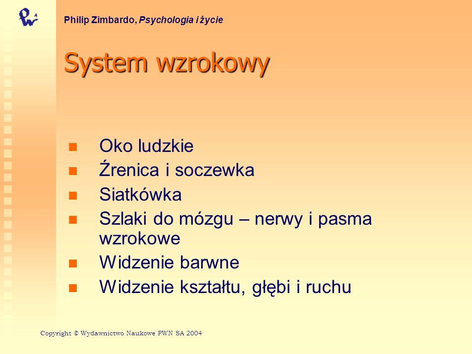 Budowa ludzkiego oka Philip Zimbardo, Psychologia i życie Copyright © Wydawnictwo Naukowe PWN SA 2004