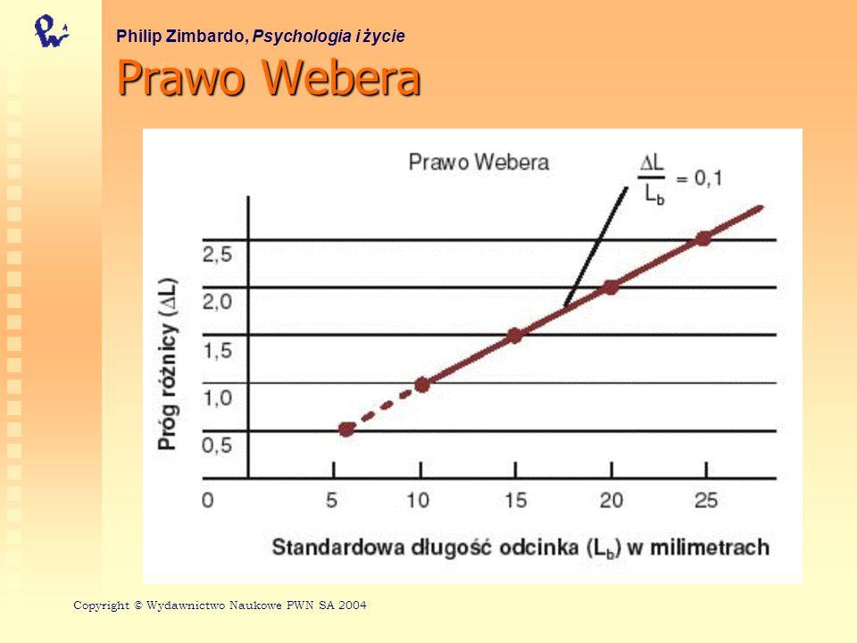 Stałe Webera dla wybranych wymiarów bodźcowych Philip Zimbardo, Psychologia i życie Wymiar bodźcaStała Webera Częstotliwość dźwięku0,003 Natężenie światła0,01 Stężenie zapachu0,07 Natężenie nacisku0,14 Natężenie dźwięku0,15 Stężenie smaku0,20 Copyright © Wydawnictwo Naukowe PWN SA 2004