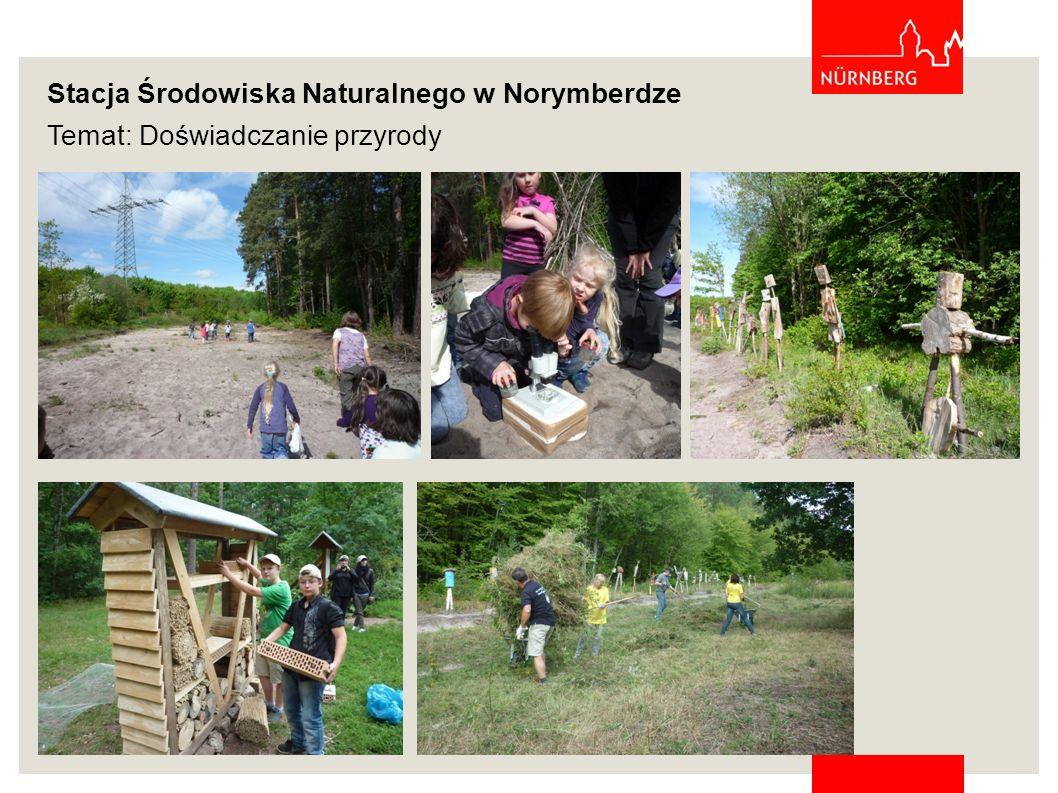 Stacja Środowiska Naturalnego w Norymberdze Temat: Komunikacja publiczna