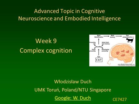 Włodzisław Duch UMK Toruń, Poland/NTU Singapore Google: W. Duch Advanced Topic in Cognitive Neuroscience and Embodied Intelligence Week 9 Complex cognition.