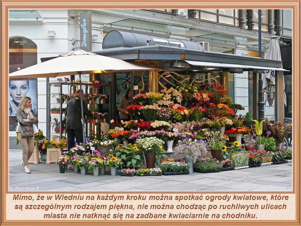 Mimo, że w Wiedniu na każdym kroku można spotkać ogrody kwiatowe, które są szczególnym rodzajem piękna, nie można chodząc po ruchliwych ulicach miasta nie natknąć się na zadbane kwiaciarnie na chodniku.