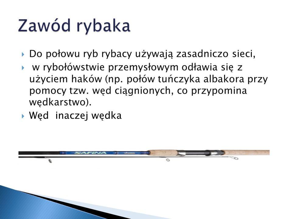  naszym zdaniem zawód rybaka jest bardzo niebezpieczny, ale i atrakcyjny,  dla pana Stanisława to pasja, którą chciał wykonywać od najmłodszych lat,  na pewno dostarcza niezapomnianych widoków (np.