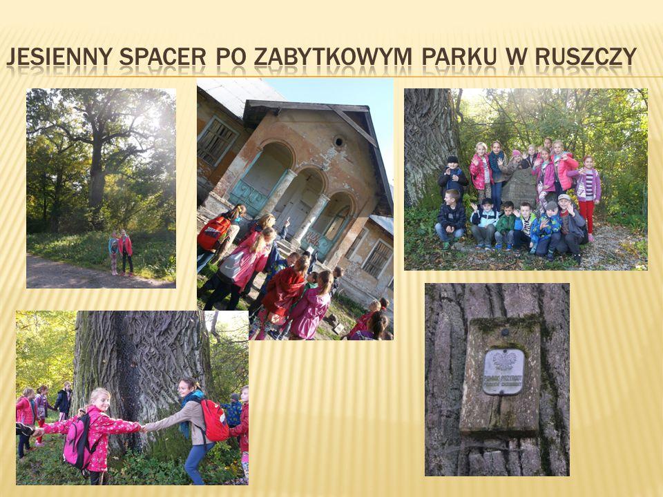  Wykorzystując piękną jesienną pogodę, wesoło bawiliśmy się chustą, zabawa dała nam wiele radości i żal było nam wracać do szkoły.