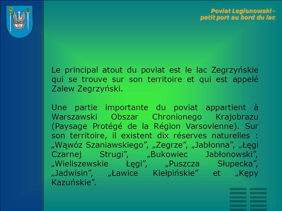 L'économie au poviat legionowski est caractérisée par la présence de petites et de moyennes entreprises dont la plupart agissent dans le secteur des services.