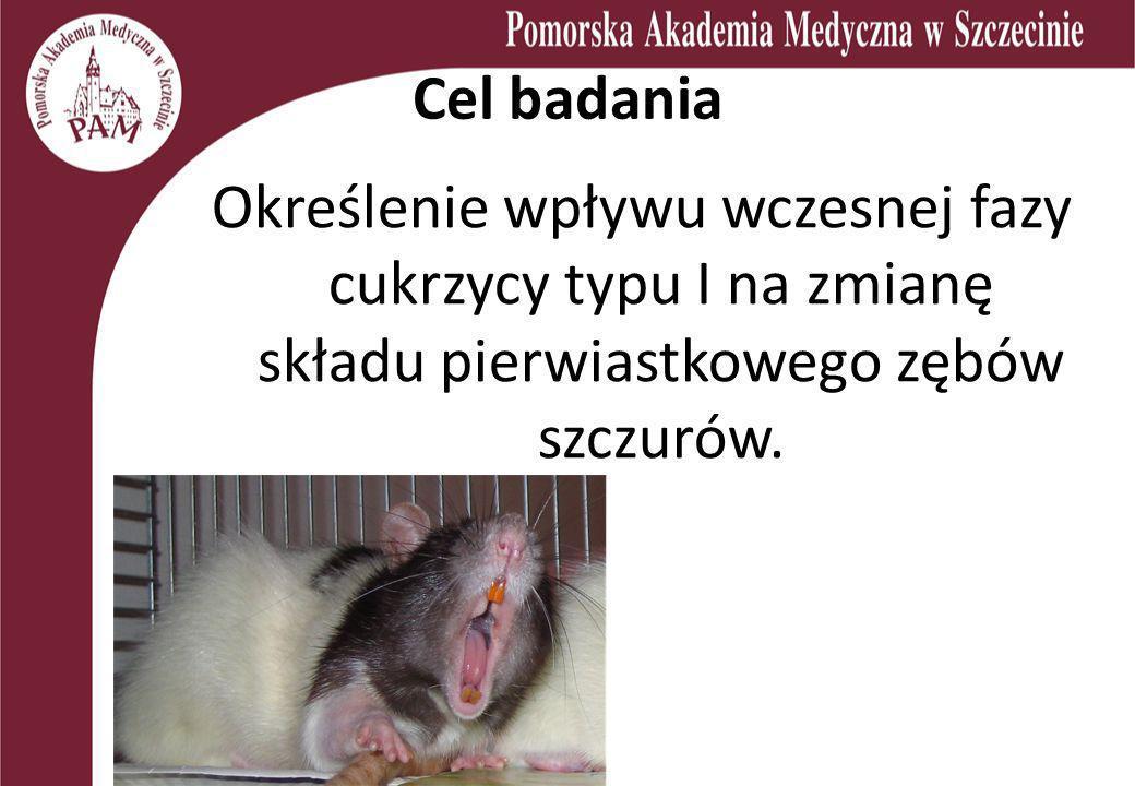 Materiał i metody 21 samic szczura Wistar ze sztucznie wywołaną cukrzycą typu I Po 10 dniach od wywołania choroby uśmiercenie zwierząt Pobranie materiału – krwi oraz zębów dolnych siecznych