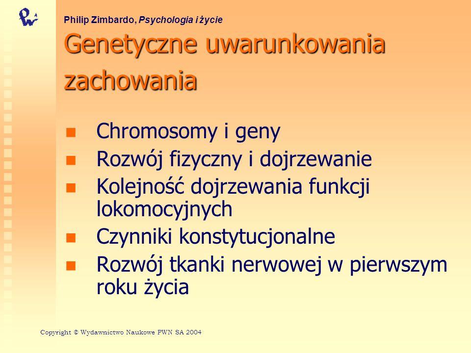 Kolejność dojrzewania funkcji lokomocyjnych Philip Zimbardo, Psychologia i życie Copyright © Wydawnictwo Naukowe PWN SA 2004 Mary M.