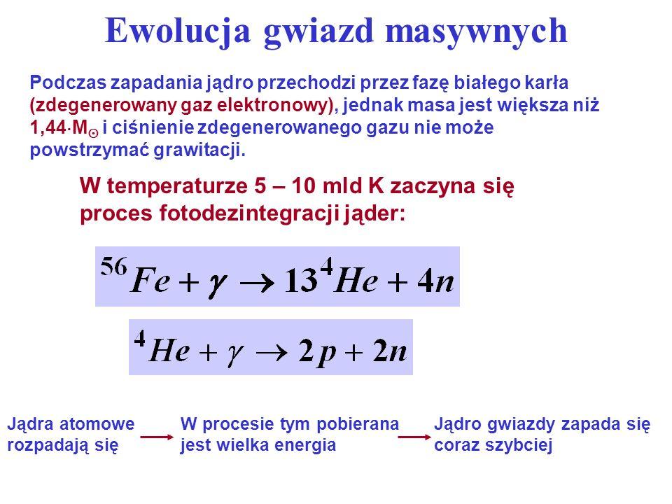Ewolucja gwiazd masywnych Większość protonów zamienia się w neutrony w wyniku odwrotnego rozpadu beta: Jest to proces nieodwracalny, ponieważ rozpady beta nie mogą zachodzić.