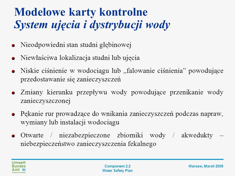 Component 2.2 Water Safety Plan Warsaw, March 2009 Identyfikacja zagrożeń Istniejące środki zabezpieczające Lista priorytetowa ryzyk Dodatkowe lub ulepszone środki zabezpieczające Ocena systemu