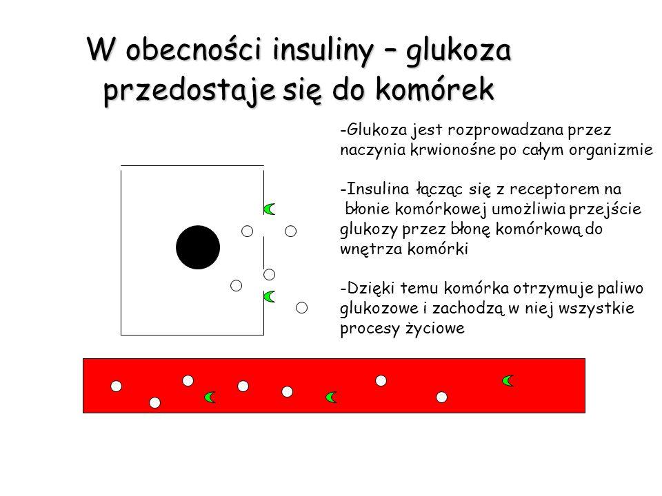 Brak insuliny – glukoza nie przedostaje się do wnętrza komórek Spalanie tłuszczu – chudnięcie aceton zakwasza organizm Nasilone pragnienie, wielomocz Brak glukozy w komórce -Brak insuliny powoduje, że błona komórkowa jest szczelna i nie przepuszcza glukozy do wnętrza komórki -We krwi i płynie śródtkankowym wzrasta stężenie glukozy -Komórka pozbawiona dopływu paliwa glukozowego spala tłuszcz -Jednocześnie wydala nadmiar glukozy z moczem, dlatego odczuwamy nasilone pragnienie i oddajemy duże ilości moczu