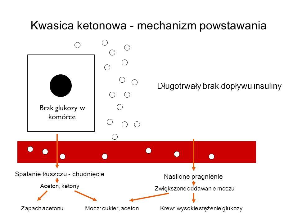 Objawy kwasicy ketonowej: B ó l brzucha Nudności Wymioty Wysoki cukier Aceton w moczu/krwi Odwodnienie Przyspieszony, pogłębiony oddech (Kussmaula) Zaburzenia świadomości Śpiączka cukrzycowa Kwasica ketonowa