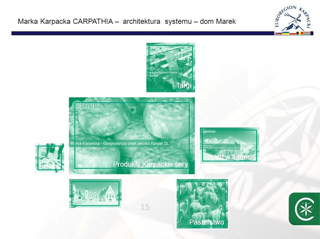 Marka Karpacka CARPATHIA – architektura systemu – powiązania 16 Strategia Programy/ produkty System sprzedaży/ Użytkownik/ klient