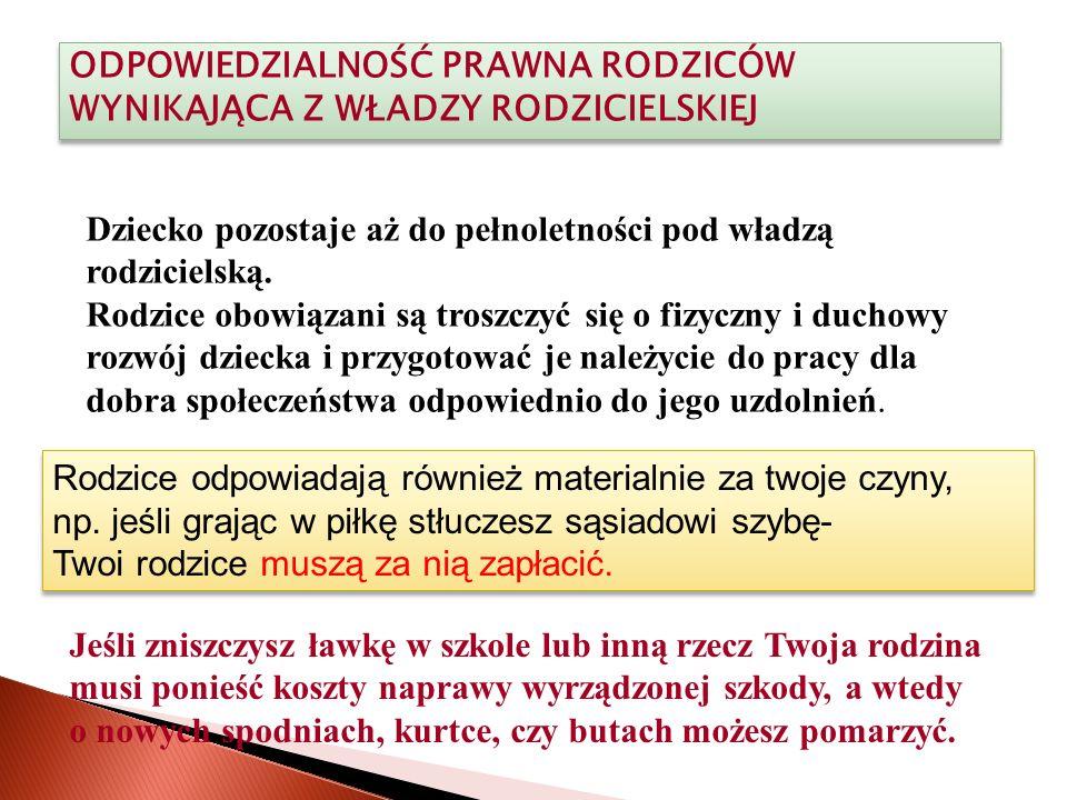 Źródła: Materiały opracowane przez Komendę Wojewódzką w Krakowie Przewodnik po wybranych przepisach prawnych w sprawach nieletnich zagrożonych demoralizacją i przestępczością, opracowany przez KW w Łodzi www.