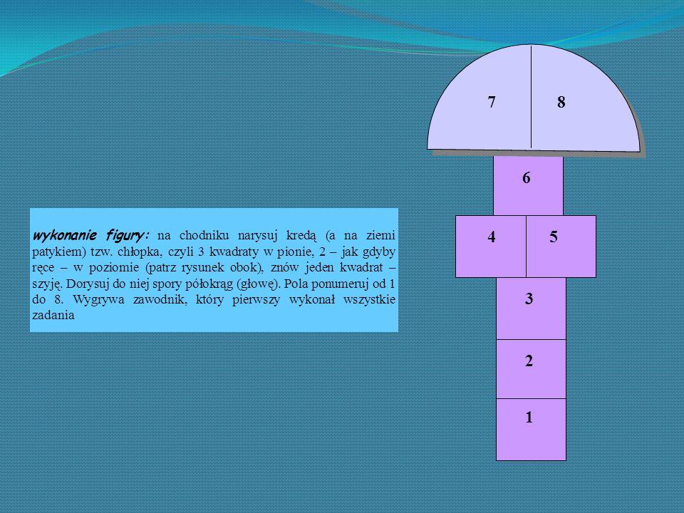 Przebieg gry gracz rozpoczynający grę rzuca kamyk i stara się trafić w pierwsze pole.