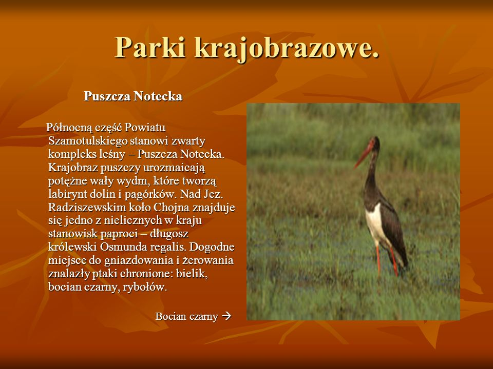 Formy ochrony przyrody Określone formy przyrody wprowadza się dla zachowania cennych składników przyrody, takich jak : siedliska przyrodnicze, siedliska gatunków chronionych, dziko występujących roślin i zwierząt, zwierząt prowadzących wędrowny tryb życia, przyrody nieożywionej, krajobrazu.