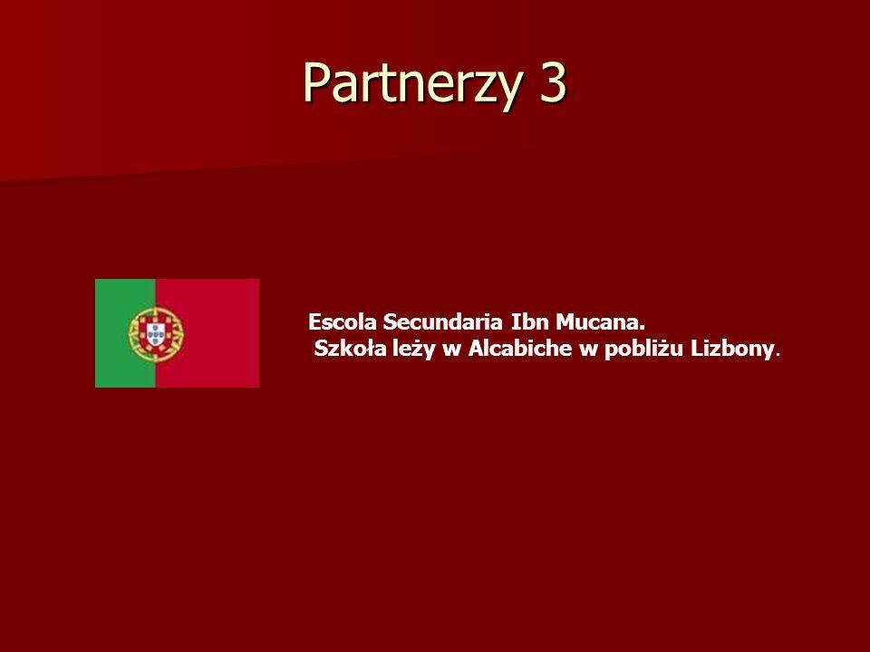 Partnerzy 4 Szkoła średnia Alytus Adolfas Ramanauskas w Alytus, Litwa.