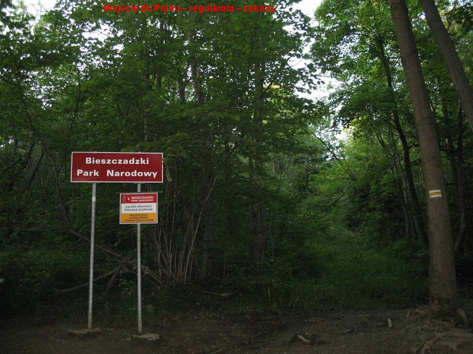 . Wejście do Parku – regulamin – zakazy