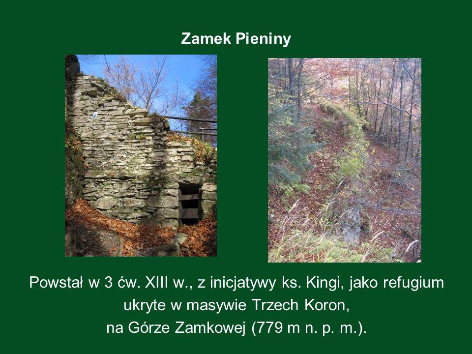 Zamek Pieniny