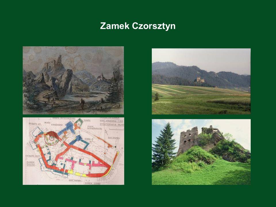 Zamek Niedzica Na Zamagórzu, po spustoszeniu przez Tatarów w 1241, kolonizację podjął król Bela IV przy udziale Berzewiczych i G ö rgeyów.