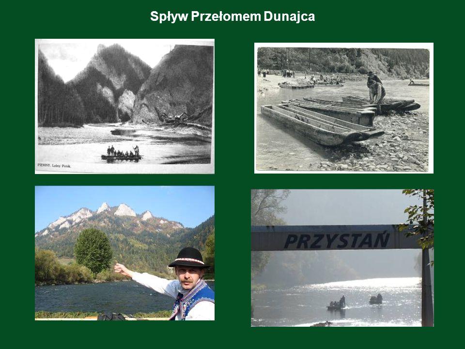 Ochrona przyrody W Pieninach rodziły się idee ochrony przyrody.
