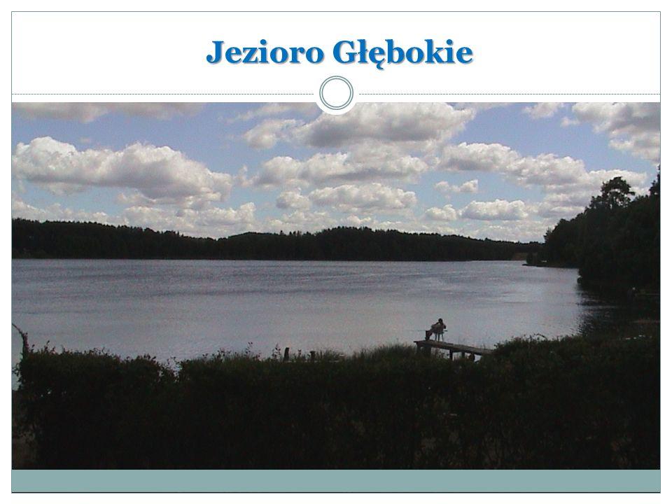 Jezioro Bobięcińskie Wielkie Jezioro Bobięcińskie Wielkie – jezioro lobeliowe w północnej Polsce na Pojezierzu Bytowskim.