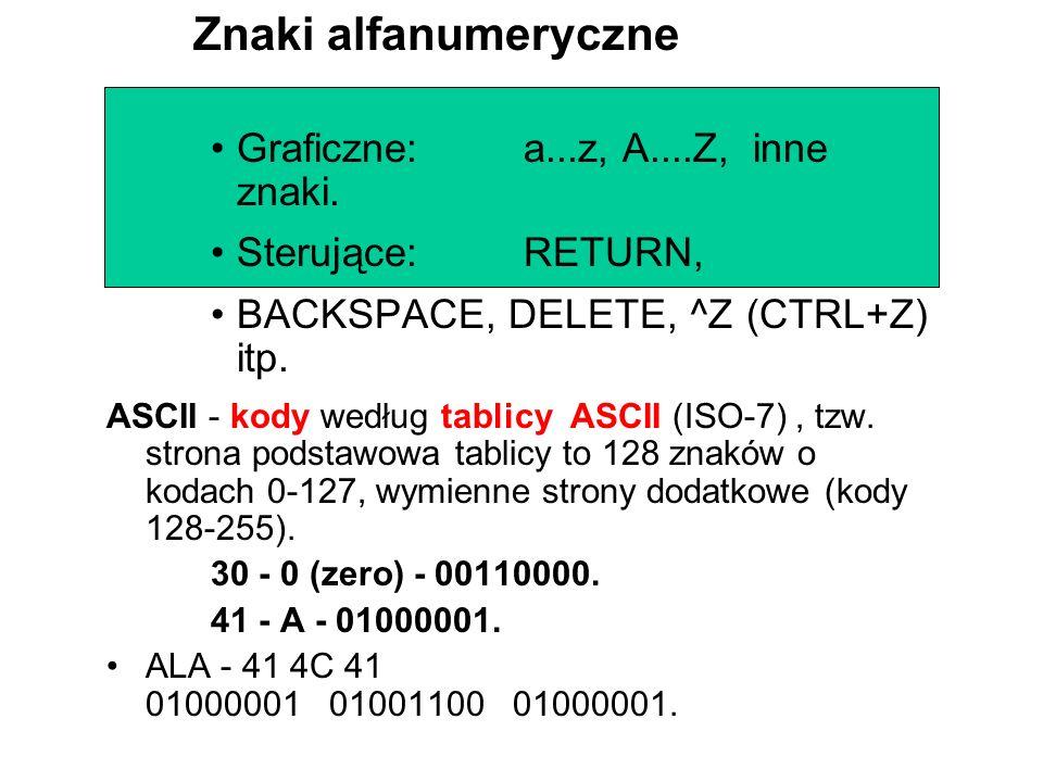 Graficzne:a...z, A....Z, inne znaki.Sterujące:RETURN, BACKSPACE, DELETE, ^Z (CTRL+Z) itp.