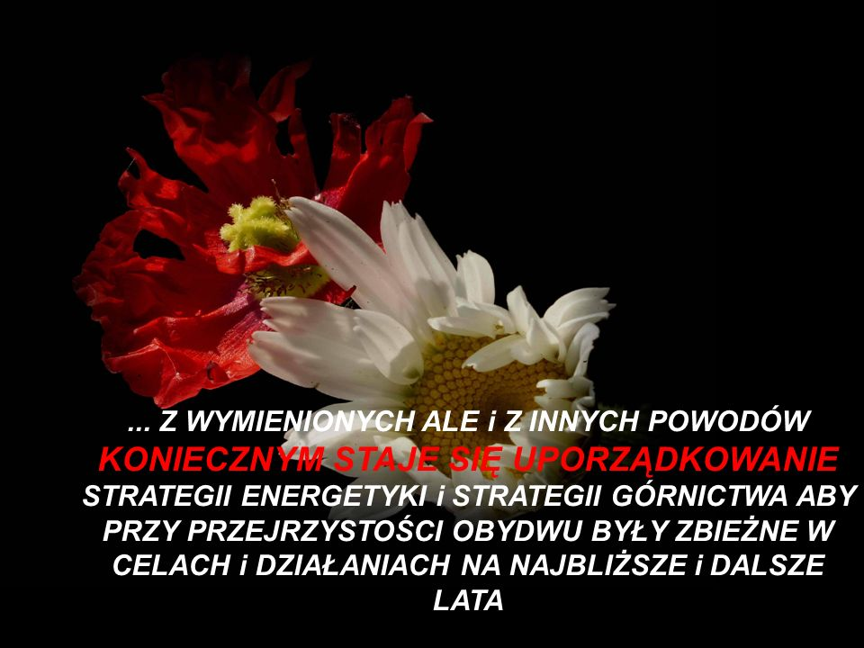 hlg@onet.pl Dziękuję.