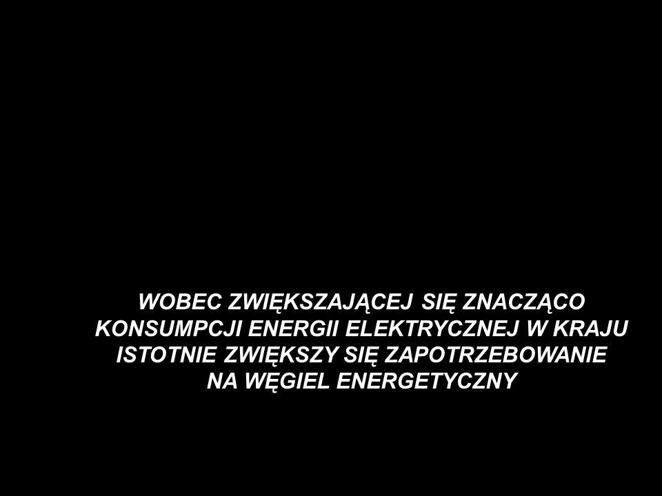 - WYBRANE PORÓWNANIA ELEKTROWNI WEGLA KAMIENNEGO DO ELEKTROWNI WEGLA BRUNATNEGO Z LAT 2001 -2005