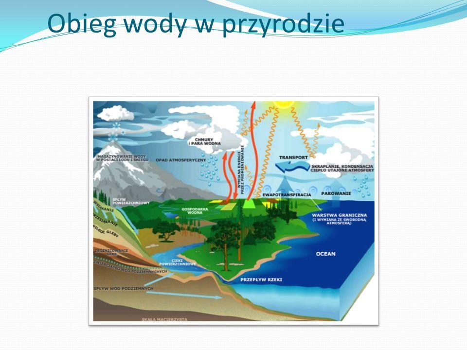 Rozszerzalność temperaturowa Woda, jako jedna z niewielu substancji, nie zwiększa swojej objętości monotonicznie z temperaturą w całym przedziale temperatur od 0 do 100 °C.