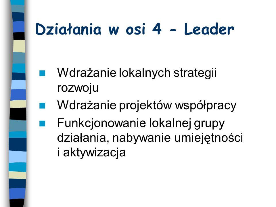 4.1 Wdrażanie lokalnych strategii rozwoju Projekty z zakresu trzech działań osi 3 –Różnicowanie w kierunku działalności nierolniczej –Odnowa i rozwój wsi –Tworzenie i rozwój mikroprzedsiębiorstw Małe projekty - niekwalifikujące się do wsparcia w ramach działań osi 3 PROW 2007-2013 przyczyniające się do osiągnięcia celów osi 3, tj.