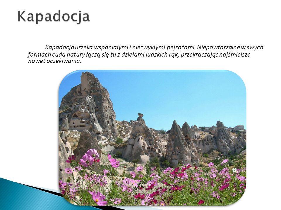 Bujny i zielony przez cały rok region Morza Czarnego, ze skalistymi górami, chłodnym morzem, plantacjami herbaty, orzechów, tytoniu i kukurydzy, stanowi uniklaną część Turcji.