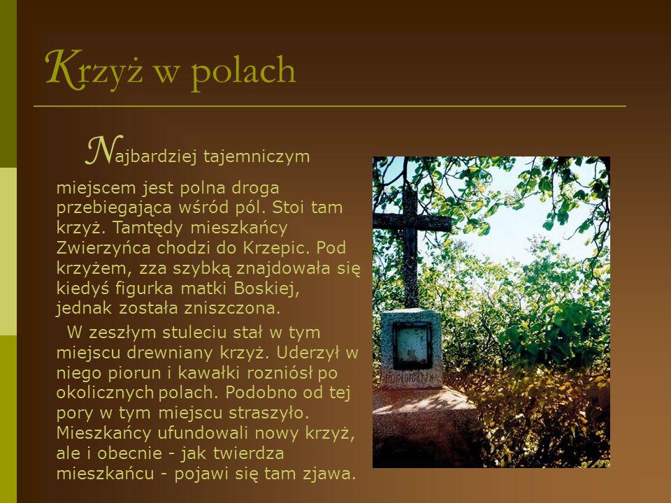 K apliczka na Doliskach J edna z najstarszych kapliczek znajduje się na Doliskach (obecnie ulica Dębowa) przed domem Państwa Bujaków.