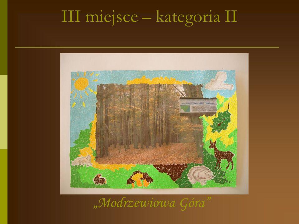 I miejsce – kategoria II Na Opatowskiej Górze