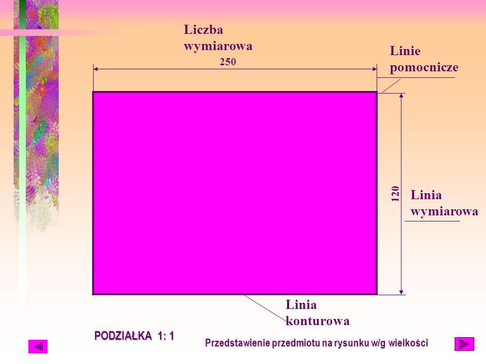 Linia wymiarowa Liczba wymiarowa PODZIAŁKA 1: 1 250 120 Linia konturowa Linie pomocnicze Przedstawienie przedmiotu na rysunku w/g wielkości
