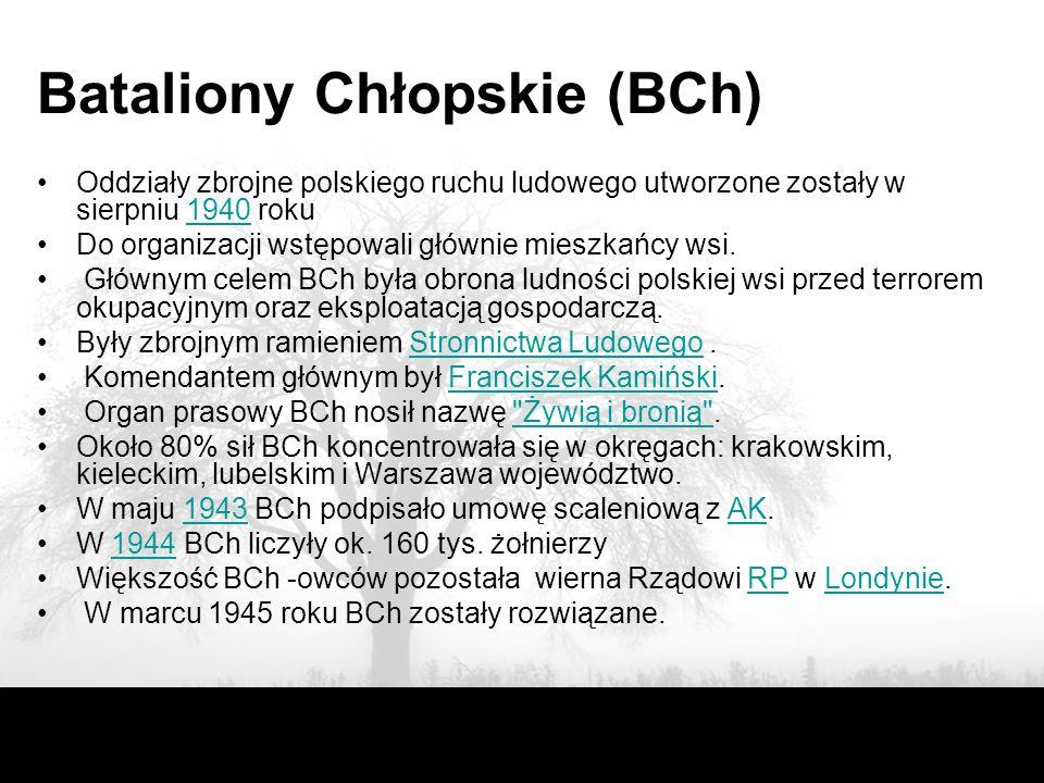BCH IV okręg Lublin Do najważniejszych akcji BCh należą walki w obronie pacyfikowanej Zamojszczyzny w latach 1942-1943.