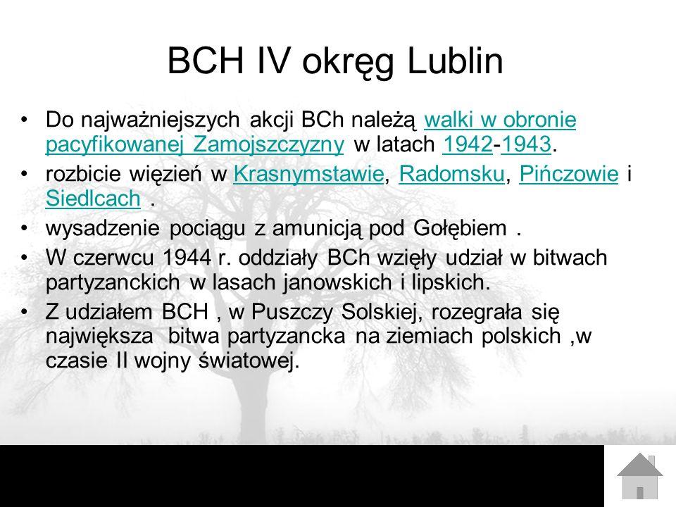 Autorzy Prezentacja została przygotowana przez : Zespół uczniów z Gimnazjum w Łopienniku Górnym pod kierunkiem Dariusza Jagiełło.