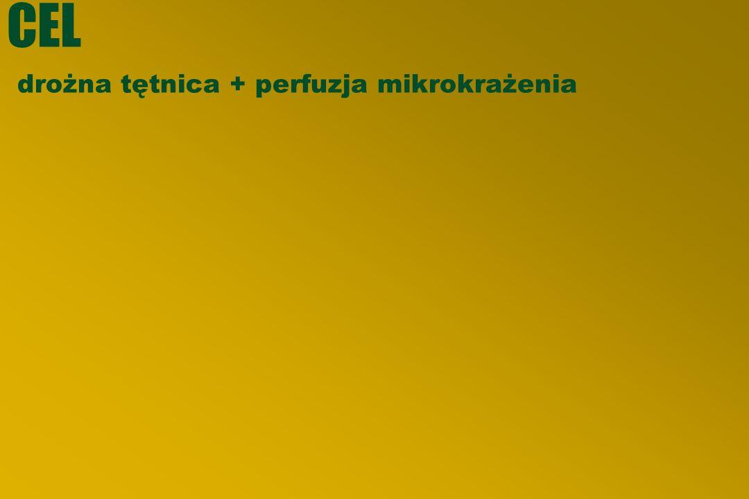 CEL drożna tętnica + perfuzja mikrokrażenia