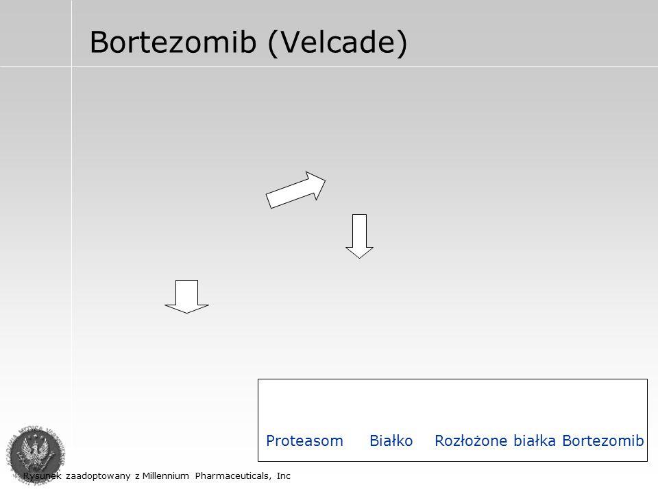 Bortezomib (Velcade) U chorych którzy są oporni na inne leczenie – 35% odpowiedzi (badania kliniczne II fazy) przy stosowaniu dawki 1,3mg/m2 i.v 1,4,8,11d ; cykle co 28 dni Działania nieporządane: Nudności Toksyczność dla szpiku (małopły tkowość, leukopenia) Polineuropatia obwodowa Ortostatyczne spadki ciśnienia Wzrost męczliwości
