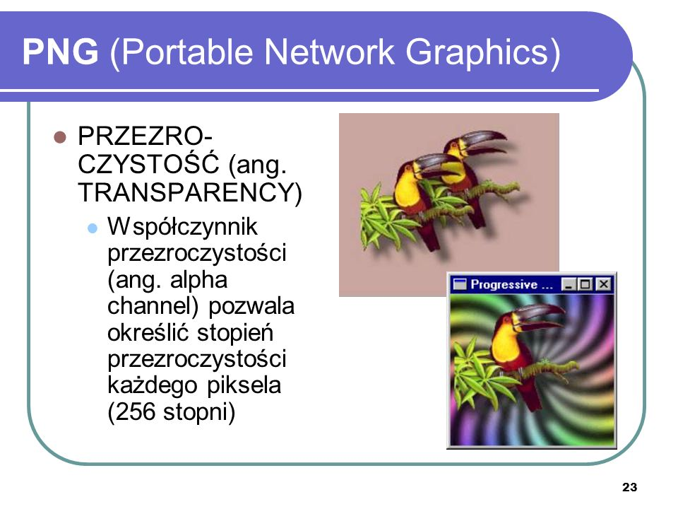 24 PNG (Portable Network Graphics) PRZEPLOT (ang.