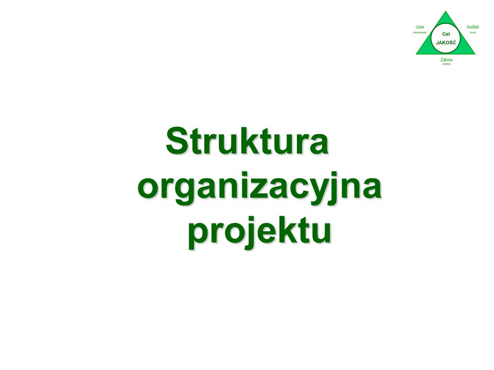 Struktura organizacyjna projektu