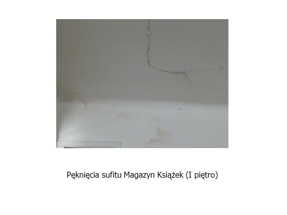 Pęknięcia sufitu Magazyn Książek (I piętro)